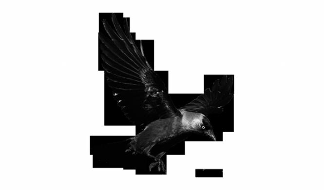 Своеобразие художественного мира Говарда Филлипса Лавкрафта